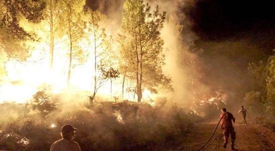 OGM: 134 orman yangını kontrol altına alındı