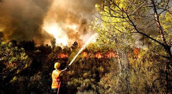 Orman yangınlarında son gelişmeler