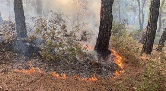 Seydikemer'deki yangına müdahale sürüyor