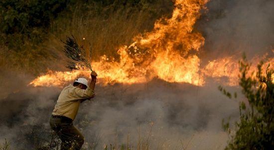 Son dakika... Manavgat'taki orman yangınını çocuk çıkarmış