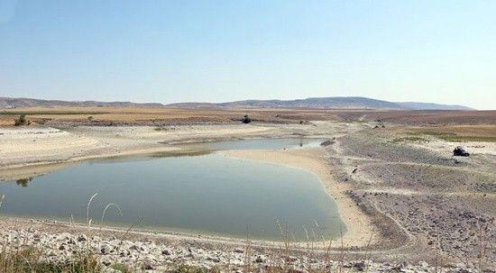 Sulama göletinde su kalmayınca balıkçıklar oltalarıyla akın etti