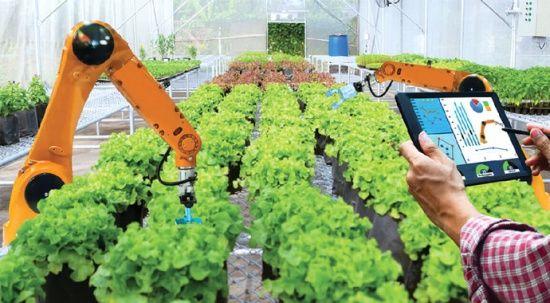Tarım alanındaki startup'lara destek