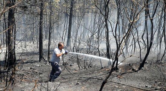 Uşak'taki orman yangını kontrol altına alındı