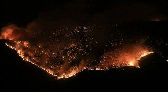 Yangın ve selin faturası 150 milyon TL