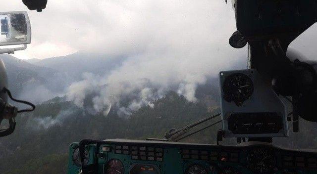 Antalya'da yıldırım düştü, ormanlık alan yandı