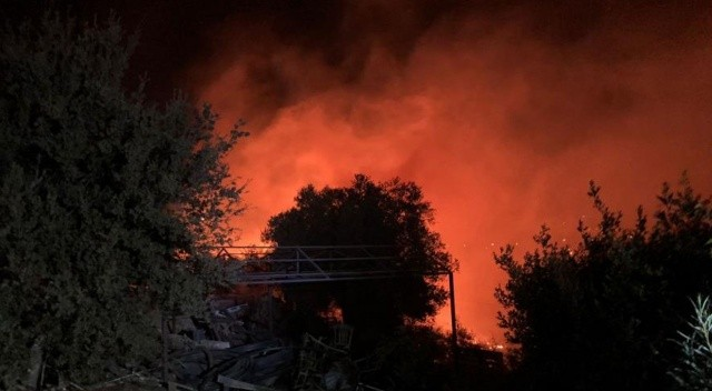 Bodrum'da makilik alanda yangın çıktı
