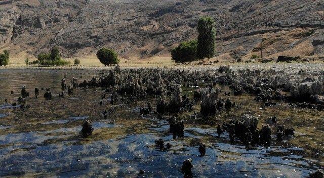 Bölge halkı endişeli! Van Gölü'nde binlerce yıllık mikrobiyalitler ortaya çıktı