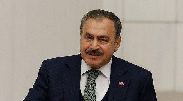 Eski Bakan Eroğlu: Yanan bölgeleri korumaya alalım