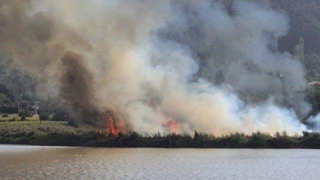 İzmir'deki sazlık yangını söndürüldü