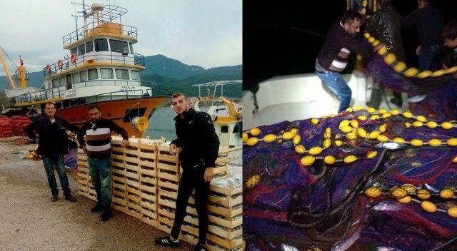 Karadeniz'de balık bolluğu yaşanıyor