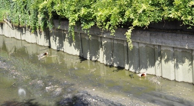 Porsuk Çayı'nda sular çekildi, kirlilik ortaya çıktı