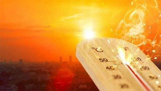 ABD'nin en sıcak yazı 2021'de yaşandı