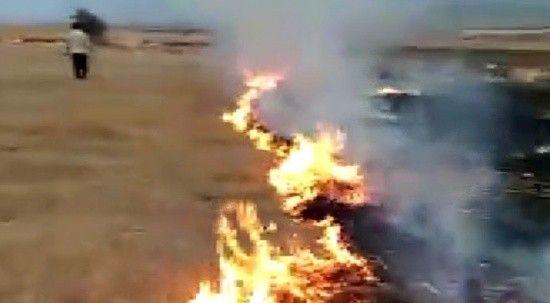 Boş arazide yangın çıktı! 5 dönüm tarım arazisi küle döndü