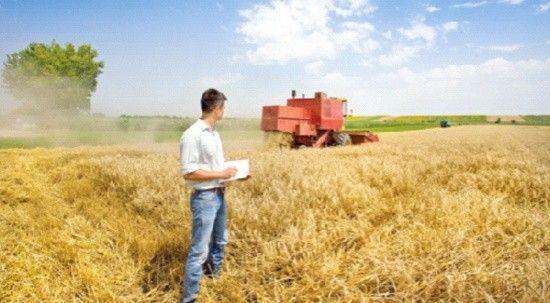 Dünyada da gıda yüzde 33 yükseldi