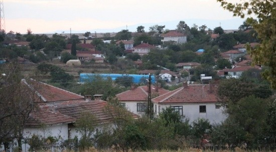 Edirne'de 'mavi dil hastalığı' alarmı! 8 köy karantinada
