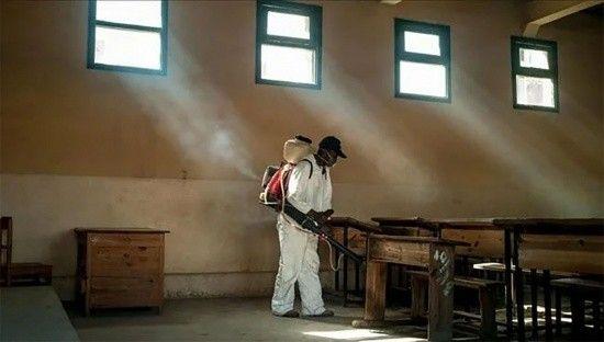 Madagaskar'da veba salgını: 7 ölü