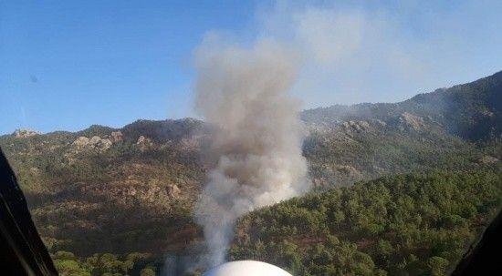 Milas'ta yangın, müdahale sürüyor