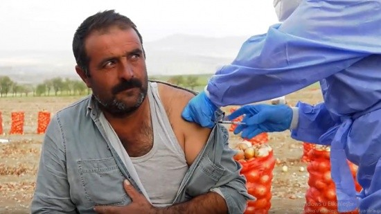 Sağlık Bakanı Koca paylaştı! Soğan tarlasında koronavirüs aşısı