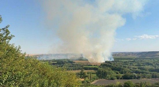 UNESCO Listesi'nde yer alan Hevsel Bahçeleri'nde yangın!