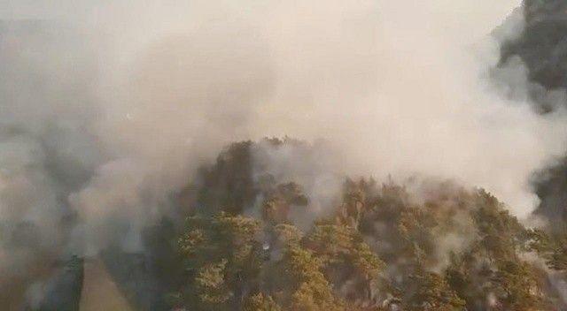 Antalya'da orman yangını: Müdahale sürüyor