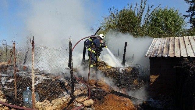 Antalya'daki yangında 15 koyun telef oldu