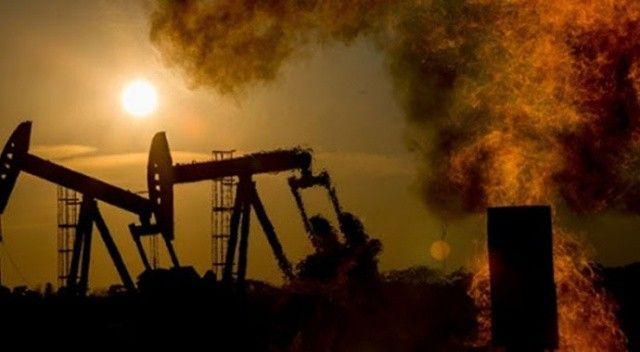 BM'den dikkat çeken iklim krizi çağrısı: Yok Oluşu Seçme