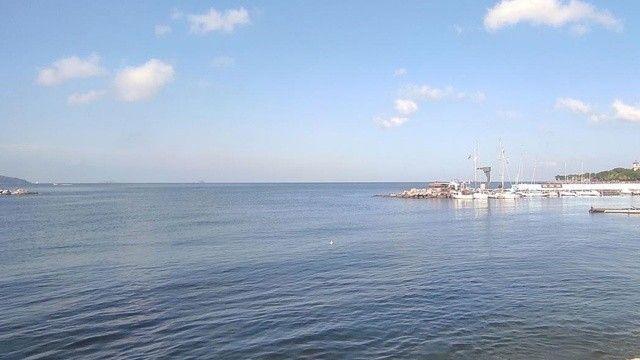 Marmara Denizi'nde iklimsel tehlike: Suyu ısınmaya başladı