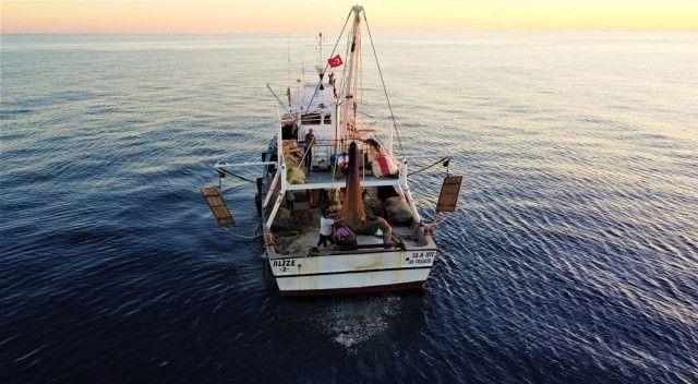 Balığı ucuza alıp pahalıya satıyorlar: Tezgahlar aracıların elinde