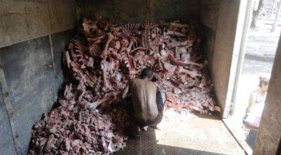 Brezilya'da açlık krizi: Hayvan leşleri arasında yemek arıyorlar