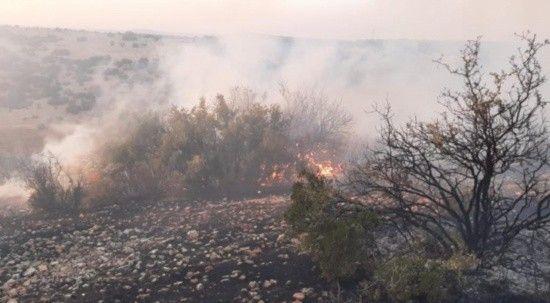 Gaziantep'te orman yangını! 5 saat sonra kontrol altına alındı