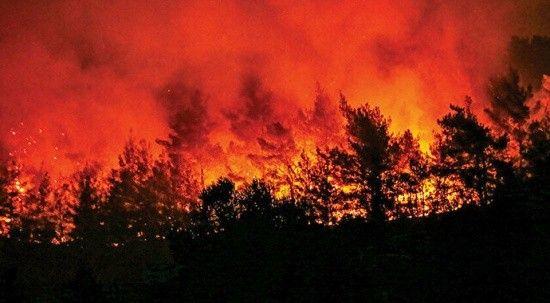 Kemer'de orman yangını çıktı, ekiplerim müdahalesi sürüyor