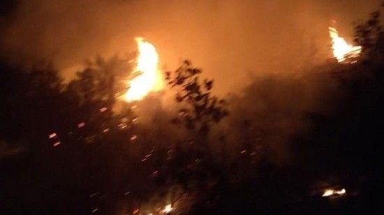 Lübnan yanıyor! Ordu müdahaleye başladı