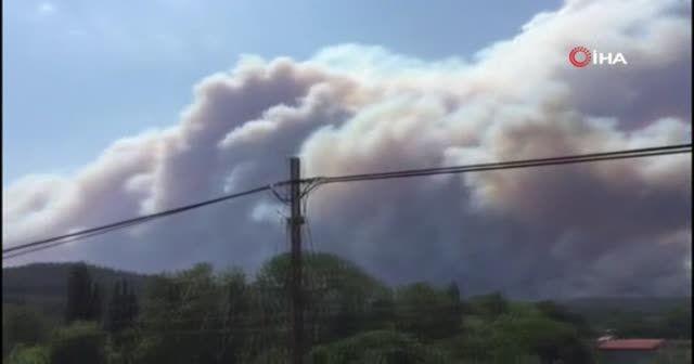 Gelibolu yarımadasında orman yangını
