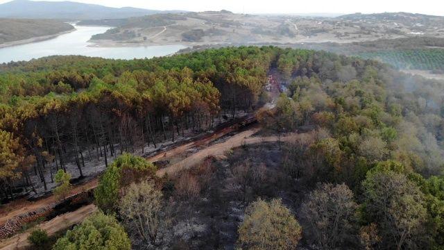 Pendik'te yangının tahribatı gün ağarınca ortaya çıktı